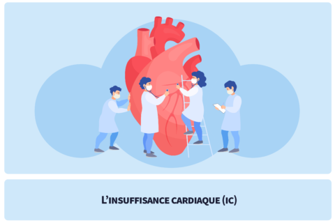 L'insuffisance cardiaque (IC)